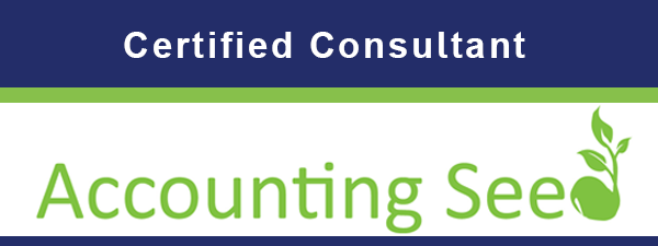 Accounting Seed Consultant